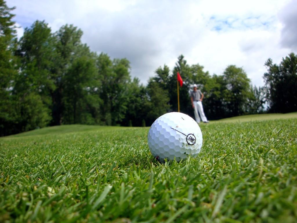 Golf : TEL 207000