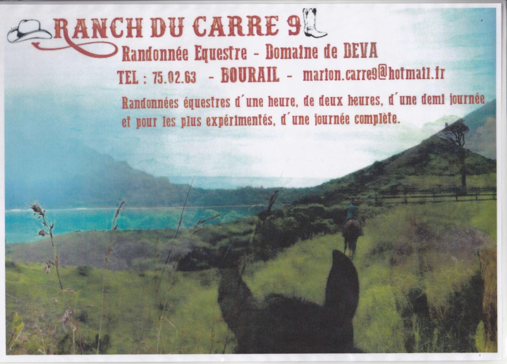 LE RANCH DU CARRE 9
